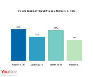 feminism survey